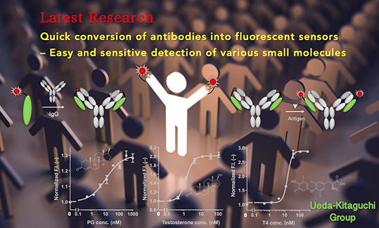 Latest Research202010