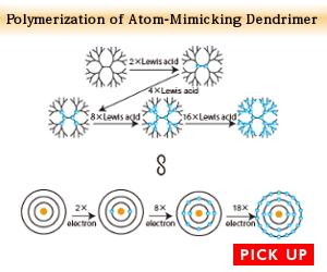 Polymerization of Atom-Mimicking Dendrimer