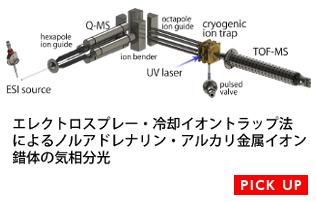 エレクトロスプレー・冷却イオントラップ法によるノルアドレナリン・アルカリ金属イオン錯体の気相分光